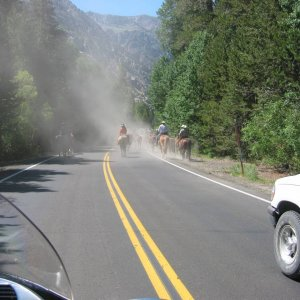 June Lake Loop Traffic Jam